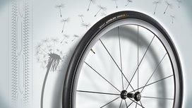 Continental Reifen aus Löwenzahn-Kautschuk gewinnt Deutschen Nachhaltigkeitspreis